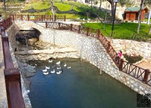 Karaisalı Karapınar Parkı Fotoğrafları 12