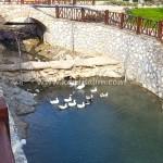 Karaisalı Karapınar Parkı Fotoğrafları 13