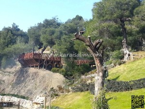Karaisalı Karapınar Parkı Fotoğrafları 17