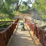 Karaisalı Karapınar Parkı Fotoğrafları 19