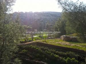 Karaisalı Karapınar Parkı Fotoğrafları 20