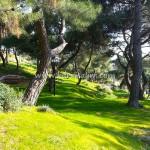 Karaisalı Karapınar Parkı Fotoğrafları 25