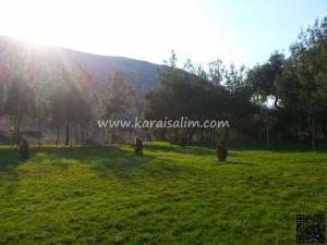 Karaisalı Karapınar Parkı Fotoğrafları 28