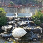 Karaisalı Karapınar Parkı Fotoğrafları 3
