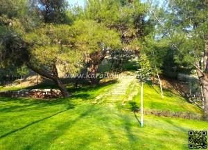 Karaisalı Karapınar Parkı Fotoğrafları 33