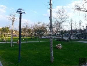 Karaisalı Karapınar Parkı Fotoğrafları 41