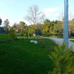 Karaisalı Karapınar Parkı Fotoğrafları 42