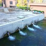 Karaisalı Karapınar Parkı Fotoğrafları 47